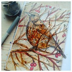 More experimenting with coffee, added some black ink and a touch of red acrylic paint for the berries. #coffeepainting, #illustration, #birds, #fieldfare, #paintedbird, #sketchbook.