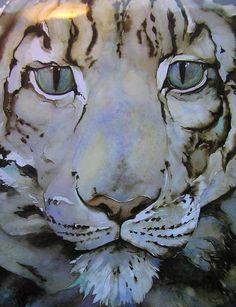 The snow leopard, Jackie Morris