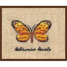 Papillon jaune - Heliconius hecale - Le Bonheur des Dames