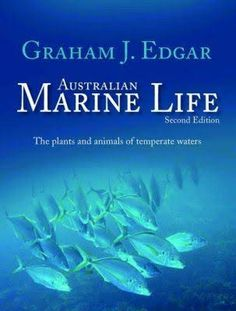 Image result for australian marine life edgar