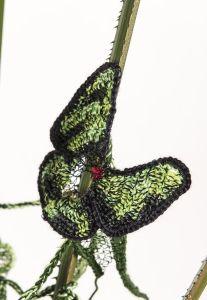 #CairnsBirdwingButterfly #ButterflyRainforest #wirecrochet #artinstallation #studiodeanna #fiberart #CairnsBotanicGarden #crochet #fibreart #coloredcopperwire #firemtngems #crochetwire