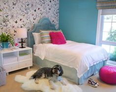 Blue Bedroom Ideas for Teenage Girls Pets Dogs