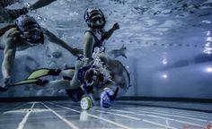 Hockey Subacutico-Underwater Hockey Ho Ho Tournament Orcas, Hockey, Love Of My Life, Underwater, Sci Fi, Women's Fashion, World, Pools, Sports