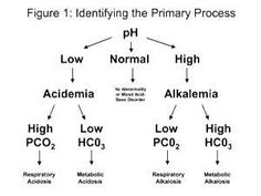 Alkalosis Vs Acidosis Nursing Labs Respiratory Therapy System Metabolic