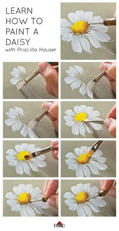 Learn how to paint a daisy with Priscilla Hauser! Super easy step by steps