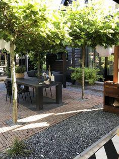 Back Gardens, Small Gardens, Outdoor Gardens, Backyard Plants, Backyard Landscaping, Backyard Patio, Patio Misting System, Small Garden Design, Diy Patio