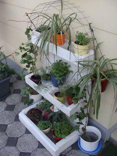 Pflanzenregal  DiY   - als Anregung  kamm man je nach Platz auch aus einer Einwegpalette als Fuß, zB Dachlatten mit Holzplatte als Rückwand oder wetere EW-Palette, und obere Regale aus Holzteieken oder Holzobstkisten bauen