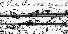 Müzik Bilimi Nedir?