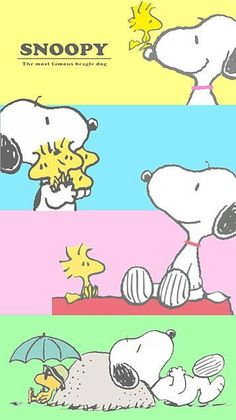 3608 best images about Snoopy on