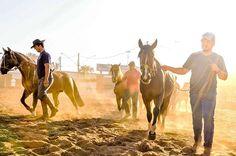 Aconteceu ontem, durante a 82ª ExpoZebu, a inauguração do escritório da Associação Brasileira de Criadores de Cavalos Crioulos dentro do Parque Fernando Costa, situado frente ao restaurante Cupim Grill. Venham conhecer também!  #Novidades #ExpoZebu #ExpoZebu2016 #ABCCC #CavaloCrioul