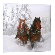 Garten-Gemälde Pferde im Schnee  Einzigartig! Ein wetterbeständiges Bild.  Umgeben Sie sich ab sofort auch außerhalb Ihrer Wohnung mit schönen Bildern. Bildschön im wahrsten Sinne des Wortes sind die beiden Pferde inmitten der Schneelandschaft. Bereichern Sie Ihren Garten oder Balkon. In der Stallgasse oder an der Außenbox ebenfalls ein faszinierender Hingucker. 3 Jaher Herstellergarantie für die Echtheit der Farben..  H/L: ca. 60/60 cm…