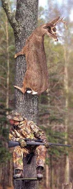 Deer Hunting HaHa …… Every hunter needs a laugh. Funny Hunting Pics, Deer Hunting Humor, Hunting Jokes, Animal Jokes, Funny Animals, Cute Animals, Deer Pictures, Funny Animal Pictures, Hunting Pictures