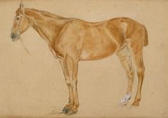 """""""A chestnut horse with a docked tail"""" by John Frederick Lewis (1804-1876, United Kingdom)"""