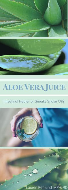 Learn the truth behind aloe vera juice!  Talk to a dietitian to get effective ways to improve your digestive health