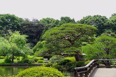 Tóquio zen Shijuku-Gyoen-jardim-japones-toquio-relato
