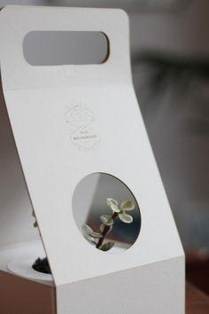 Plant Packaging Prototype from Elle Brotherhood https://www.tumblr.com/dashboard