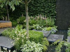 Amersham garden design - contemporary house garden ♥ Beautiful flowers :) garden gardening pretty cool fashion design flower