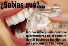 Screeching Dental Care Benefits Of Dental Facts, Dental Humor, Dental Hygienist, Oral Health, Dental Health, Dental Care, Dental Discount Plans, Happy Dental, Dentist Art