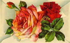 http://vintagebotanicals.blogspot.com/search/label/19th century