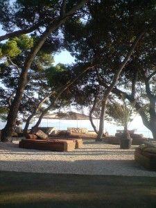 The Beach, Petrcane