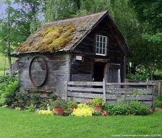 An Old Garden Shed