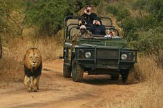 Mala Mala has been going now for many many years and this stunning camp is situated between the Sabi Sands Game Reserve and the world famous...