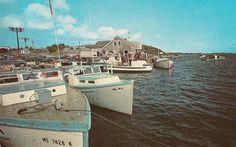 Chatham 'Cape Cod' Mass.  The Chatham Fish Pier, Shore Rd.