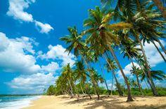 Image for Desktop: beach