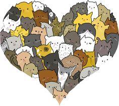 cat lover tumblr - Buscar con Google