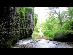 Fly Fishing The Driftless In 2015 - YouTube