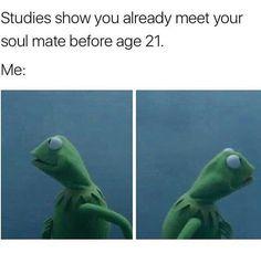 Top 10 Lijstjes - Koala Funny - Funny Koala meme - - Studies Show You Already Meet Your Soul Mate Before Age 21 The post Top 10 Lijstjes appeared first on Gag Dad. Funny Kermit Memes, Crazy Funny Memes, Really Funny Memes, Stupid Memes, Funny Relatable Memes, Funny Tweets, Haha Funny, Funny Posts, Funny Cute
