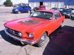 Old Mustangs For Sale 1967 Mustang, Ford Mustang Coupe, Shelby Mustang, Ford Mustang Fastback, Project Cars For Sale, 1967 Shelby Gt500, Mustang For Sale, Custom Muscle Cars, Old Fords