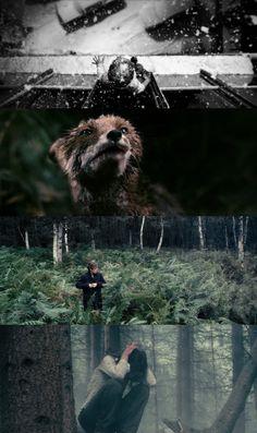 Cinematography Anthony Dod Mantle Antichrist