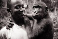 Thierry holding happy baby gorilla