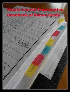 Nature Journal Organization - tabs by HarmonyArtMom, via Flickr
