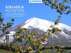 Montenegro Travel Guide - Bjelasica Mountain