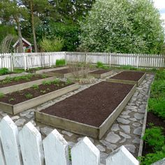 Garden boxes with stone path