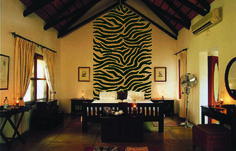 GET WILD with this giant set of zebra stripes from Elephants on the Wall. This Paint-by-Number wall mural was repeated one more time to get the full height of the wall.