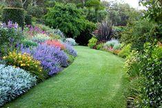 Great mixed border curves - - at The Garden Vineyard, Mornington Peninsula, Australia