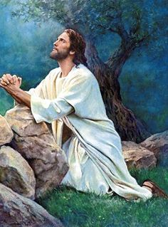 Christ in the garden Pictures Of Jesus Christ, Religious Pictures, Jesus Our Savior, Jesus Is Lord, Religion, Image Jesus, Jesus Tattoo, Image Beautiful, Beautiful Pictures