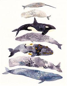 Adorable watercolor whales! - http://25.media.tumblr.com/tumblr_mdcnul6xrX1qhttpto5_1280.jpg#