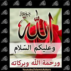 Good Morning Images, Good Morning Quotes, Salam Image, Cool Art Drawings, Islamic Quotes, Beautiful Images, Projects To Try, Jumma Mubarak, Gud Morning Images