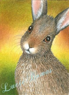 Rabbits in Fine Art Paintings | ACEO art print LE Hare 27 rabbit, painting by Lucie Dumas