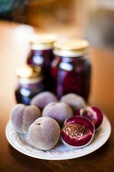 "Rare ""Blackboy"" heirloom peaches... | Flickr - Photo Sharing!"