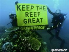 Charlie Veron issued a dire warning about the fate of the Great Barrier Reef today when he joined Greenpeace divers in an underwater protest. Family Trust, Underwater Pictures, Ocean Pollution, Great Barrier Reef, Save The Planet, Global Warming, Social Justice, Verona, Climate Change