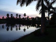 Florida - Copyright Katy Kavanagh