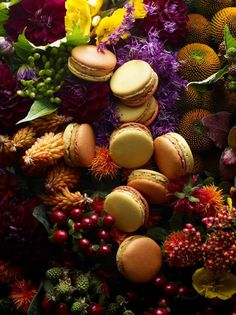 The master of macaroon, Pierre Hermé published a unique recipe book with 60 divine recipes to cook at home.  Or macaroons lovers can savour these mouthwatering pastries at only 5 minutes away from La Maison Saint Germain!  72 Rue Bonaparte, 75006 Paris