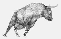 Drawings of Bulls Made from Continual Contours | MASHKULTURE