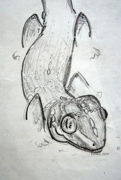 My gecko :3 Fatush ! :) From: Barbora Gradová https://www.facebook.com/Bagrrrr?fref=ts