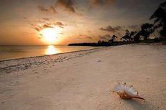 Sundown in Zanzibar